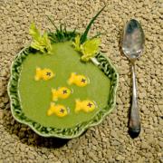 Pond Scum Soup