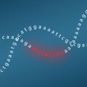DNAmutation