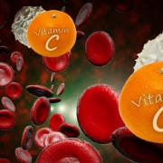 Vitamin C and White Blood Cells