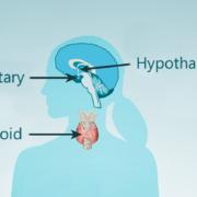 ThyroidSystem